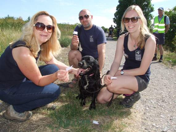 'Dog Awareness Day' on Two Tree Island